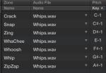 ZP - Whips